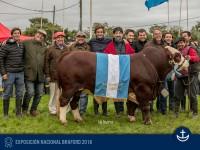 Expo-Nacional-Braford-2018