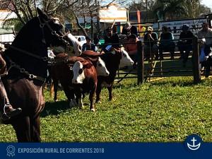 Exp-Corrientes-2018