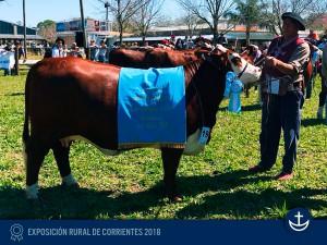 Exp-Corrientes-2018-9