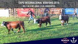 Nacional-Braford-2016